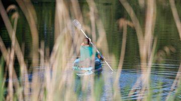 Canoeing 5292780 1920